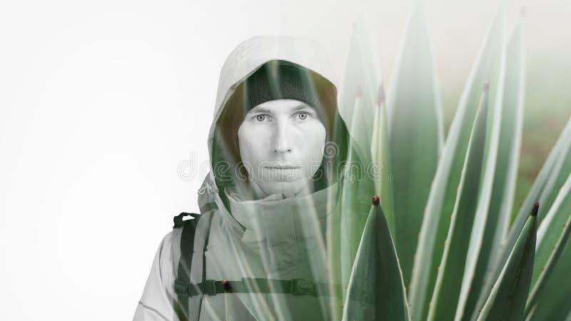 Сторона hiker молодого человека и succulent зеленого растения Фотография влияния двойной экспозиции стоковая фотография