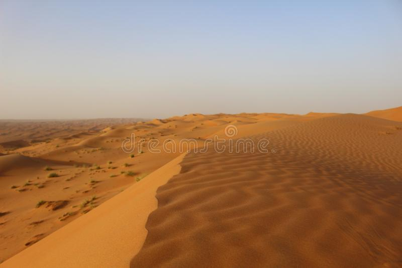 2 стороны текстуры на дюне в песках Wahiba в Омане стоковое изображение