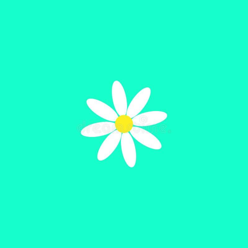 Стоцвет белой маргаритки Милый завод цветка Карта любов Концепция значка стоцвета растя r r o иллюстрация вектора