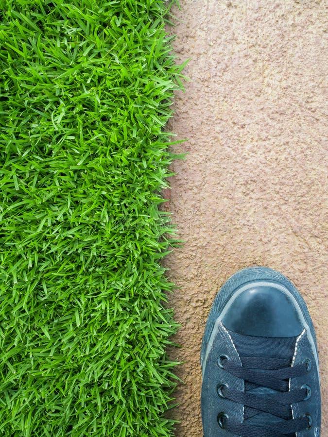 Стоять на лужайке между полом цемента стоковые фото