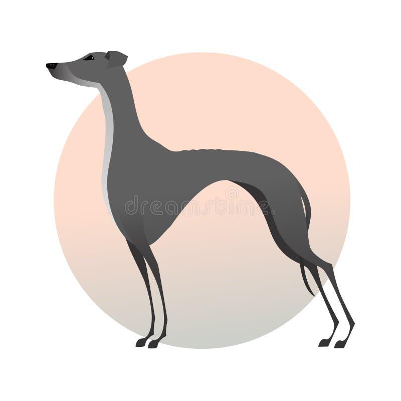 Стоящая борзая на предпосылке Стилизованная собака изображения иллюстрация вектора
