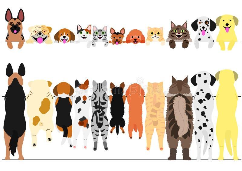 Стоящие собаки и кошки передние и задний комплект границы бесплатная иллюстрация