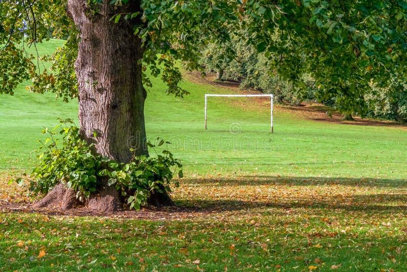 Столбы цели в городском парке игры стоковое фото rf