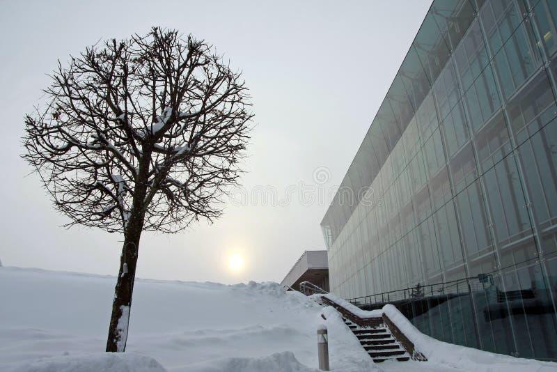 Столица Латвии Риги стоковое фото rf
