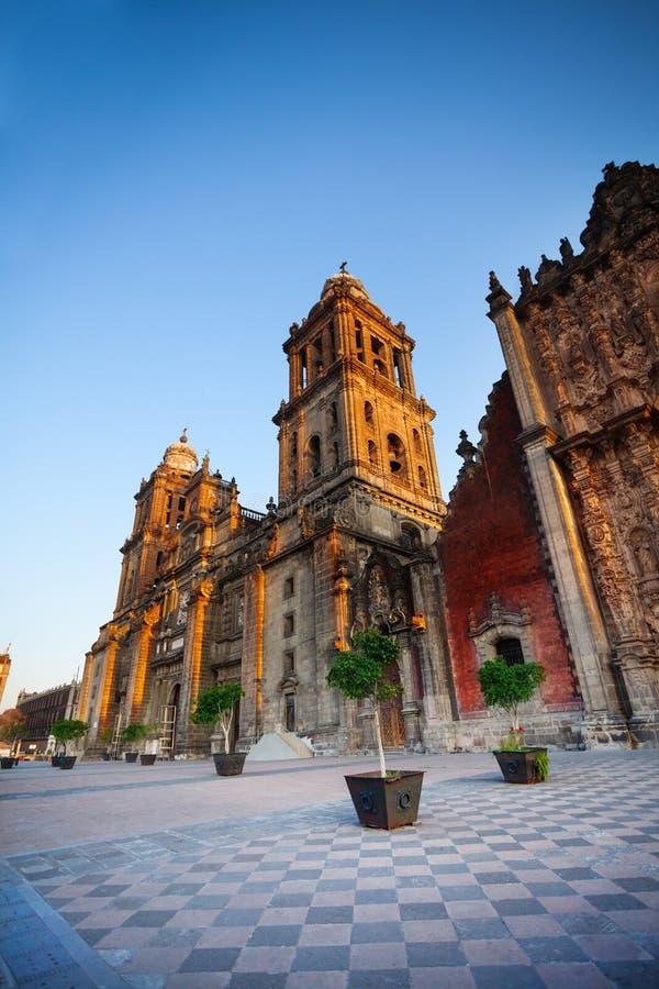 столичный житель Мексика города собора стоковые изображения rf