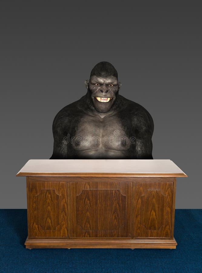 Стол офиса гориллы не совсем чистого дела иллюстрация штока