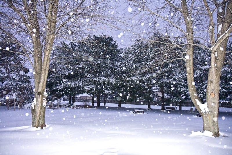 страна чудес зимы места стоковые изображения rf