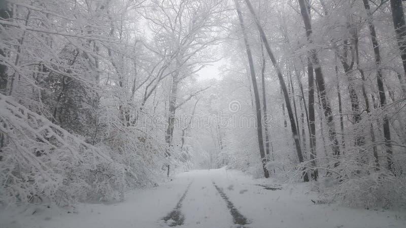 Страна чудес зимы после работы стоковые фото