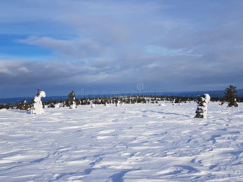 Страна чудес зимы славное небо с тонкими облаками стоковое фото rf