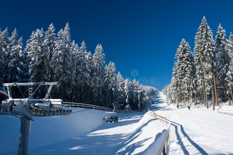 страна чудес катания на лыжах стоковое фото rf