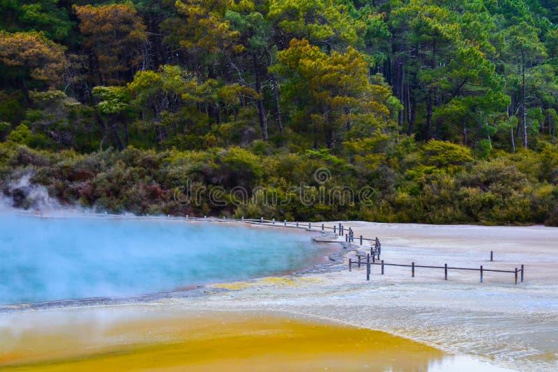 Страна чудес Новая Зеландия Wai-O-Tapu термальная стоковые фото