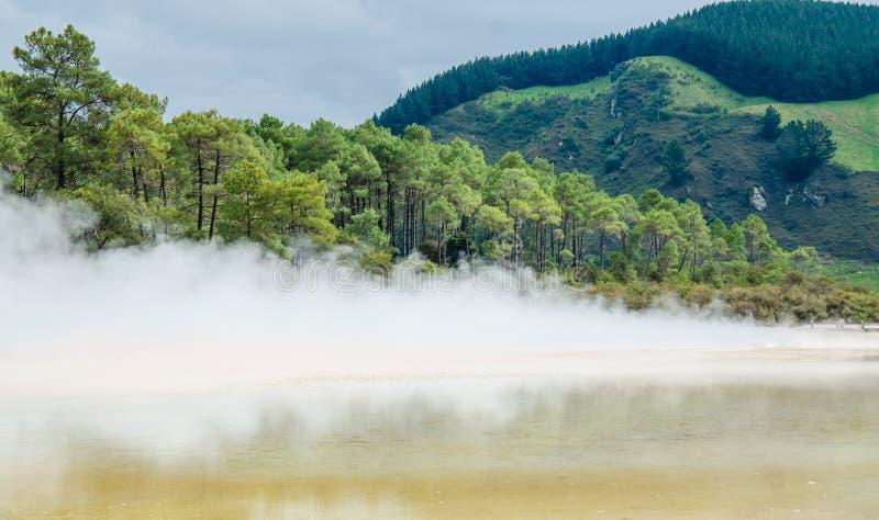 Страна чудес восходящего потока теплого воздуха Wai-O-Tapu стоковые фотографии rf