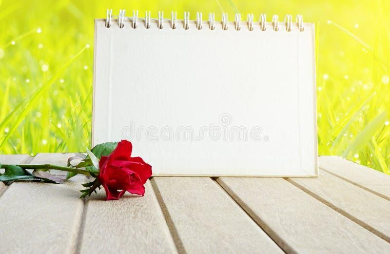 Страница и красная роза календаря чистого листа бумаги цветут над травой поля зеленого цвета природы стоковое изображение rf