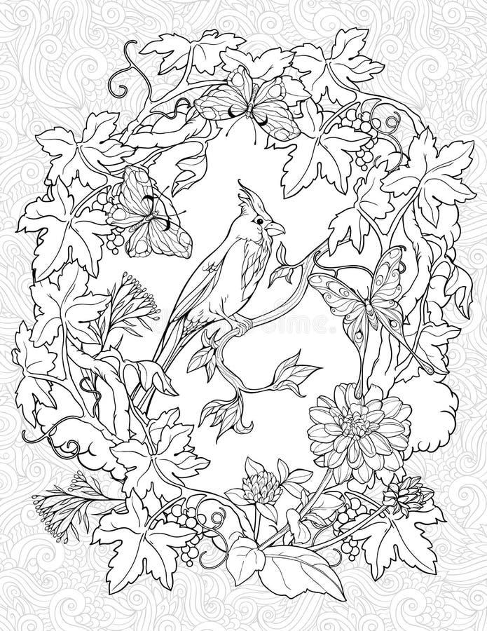 Страница расцветки с бабочками и малой птицей иллюстрация вектора