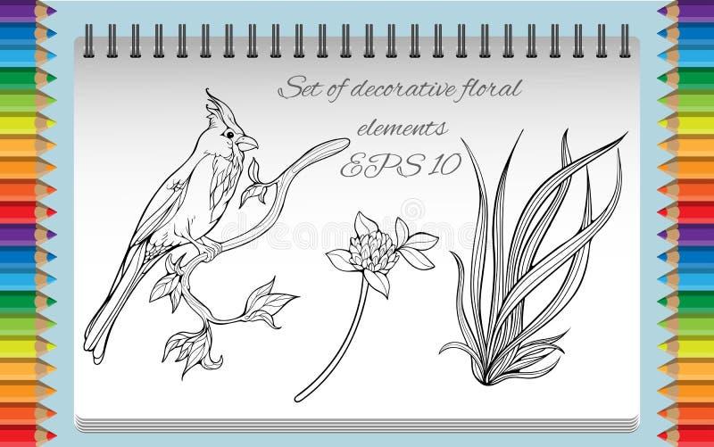Страница расцветки с изолированными изображениями птицы дальше бесплатная иллюстрация