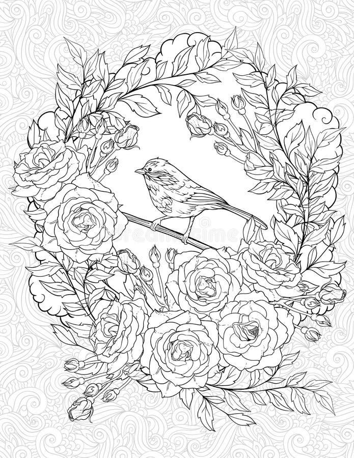 Страница расцветки с малой птицей и розами иллюстрация штока