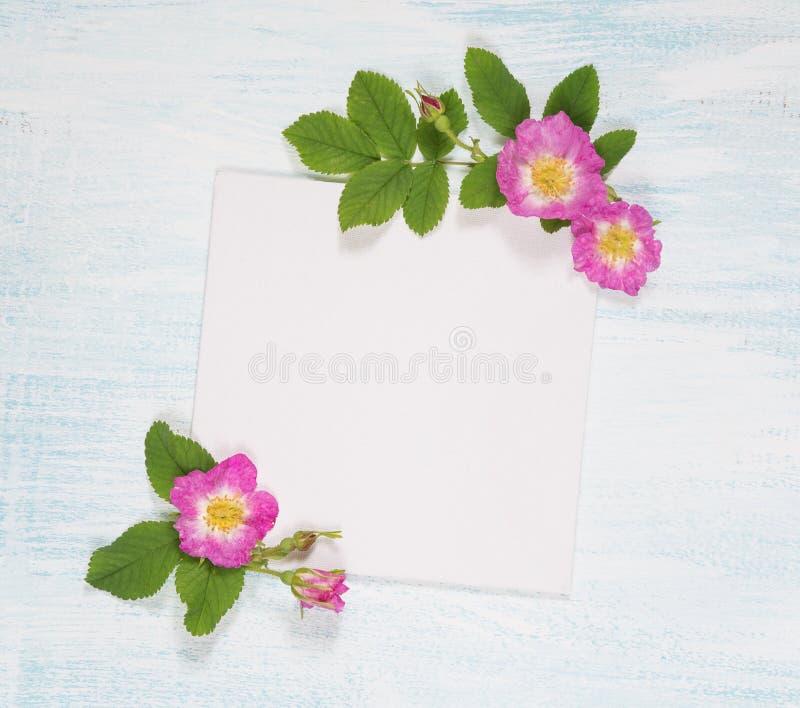 Страница Scrapbook с одичалыми розами стоковые фото