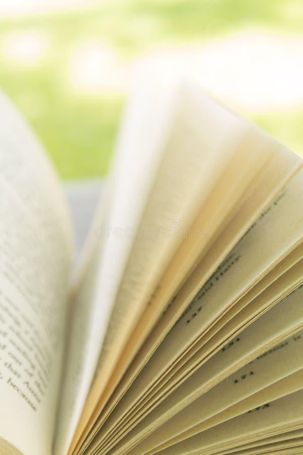 Страницы книги стоковое фото rf