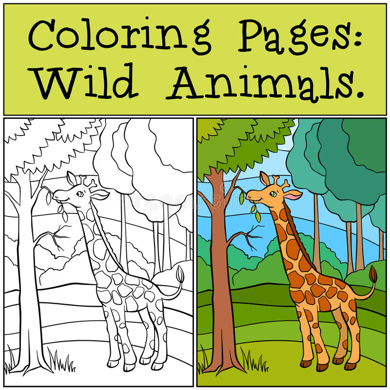 Страницы расцветки: Дикие животные милый giraffe немногая иллюстрация вектора
