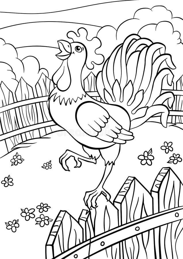 Страницы расцветки птиц Милый петух иллюстрация вектора