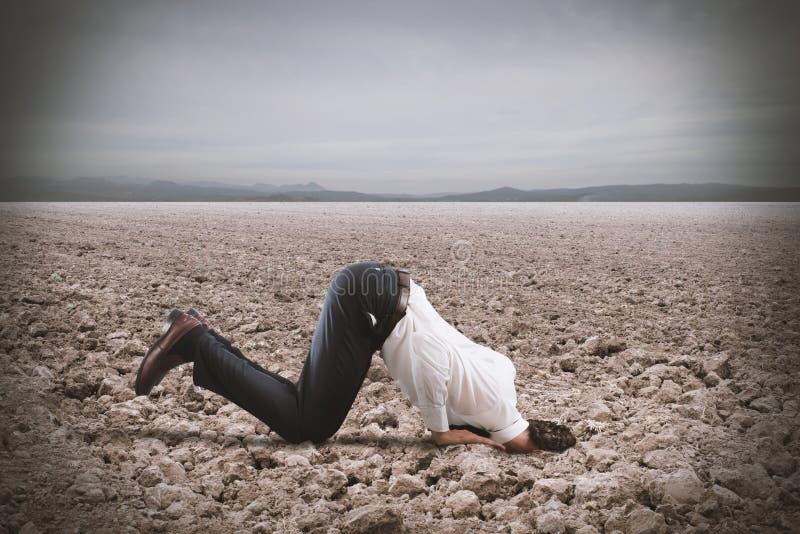 Страх кризиса с бизнесменом любит страус стоковое изображение rf