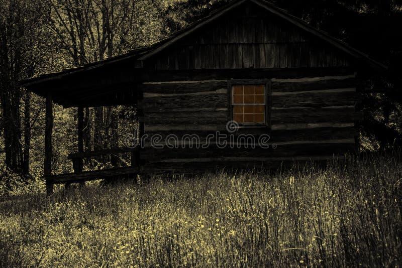 Страшная кабина в древесинах стоковое изображение