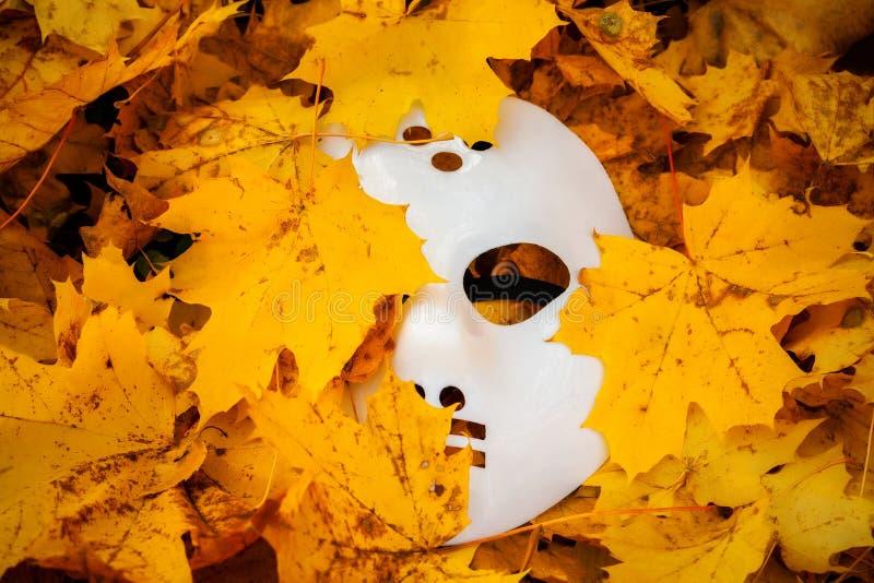 Страшная маска хеллоуина между листьями осени стоковая фотография