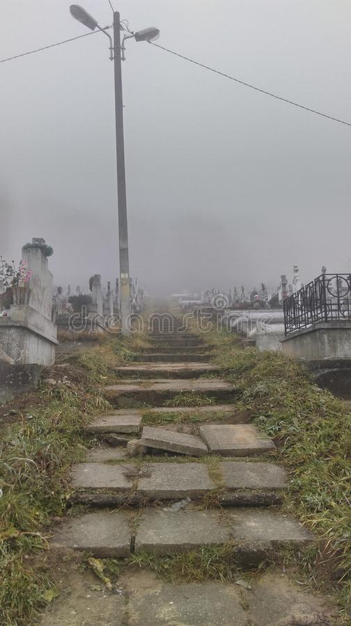 Страшное кладбище Transylvanian в тумане стоковые фото