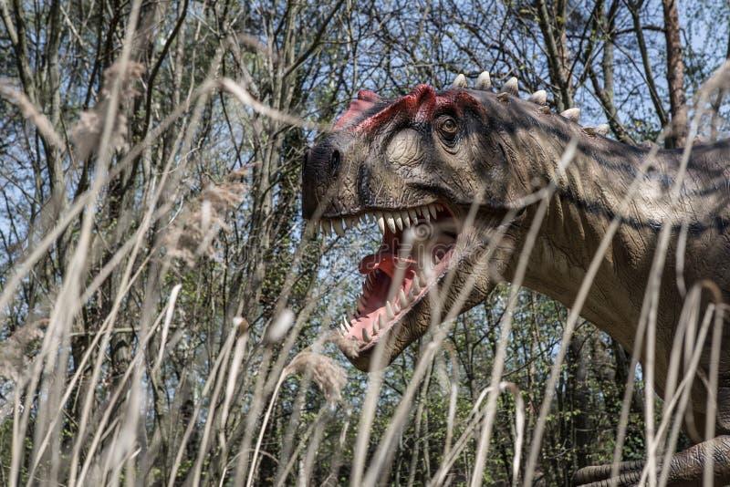 Страшное rex Dino динозавров t dino стоковые фотографии rf