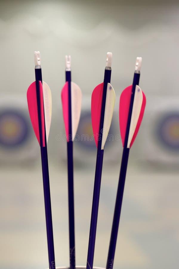 Стрелки Archery молодости с целями стоковые изображения