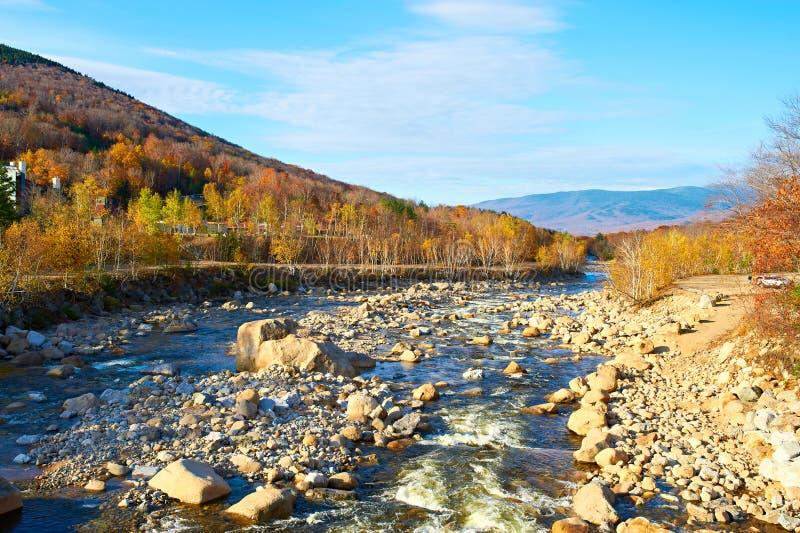 Стремительное река на осени стоковая фотография rf