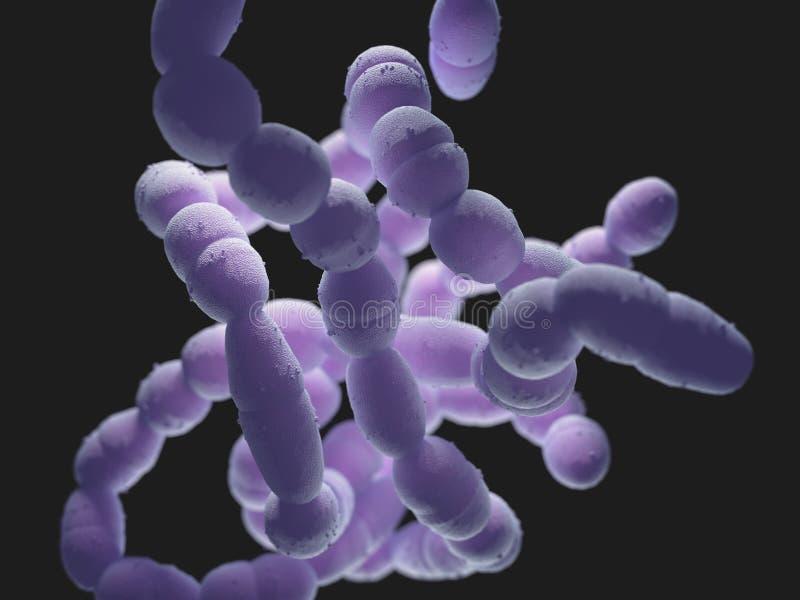 Стрептококк бактерии Pneumoniae бесплатная иллюстрация