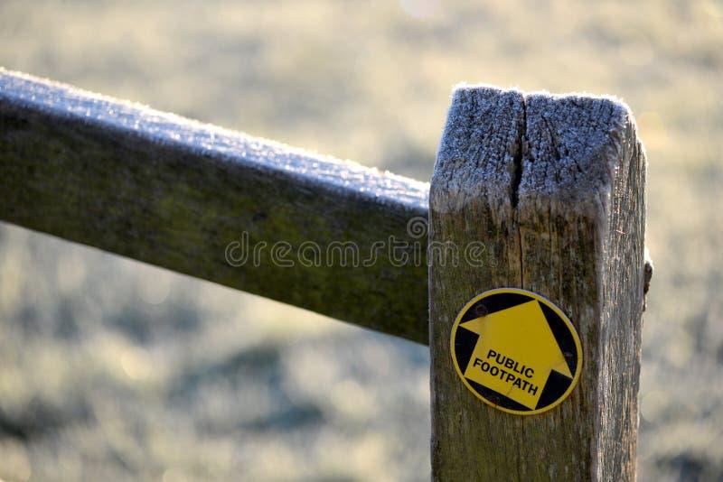 Стрелка тропы на столбе дуба стоковое фото
