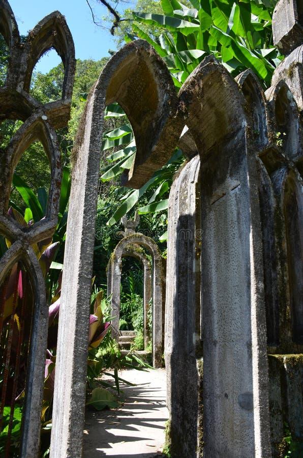 Стробы в ботаническом саде Джеймс стоковые изображения
