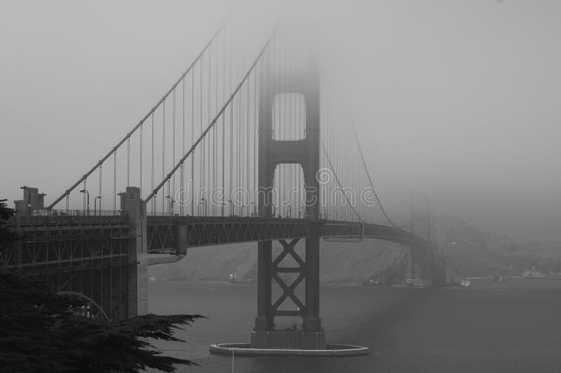 строб золотистый w тумана моста b стоковое фото