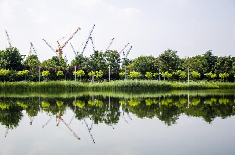 Строительные площадки в лесе стоковые фото