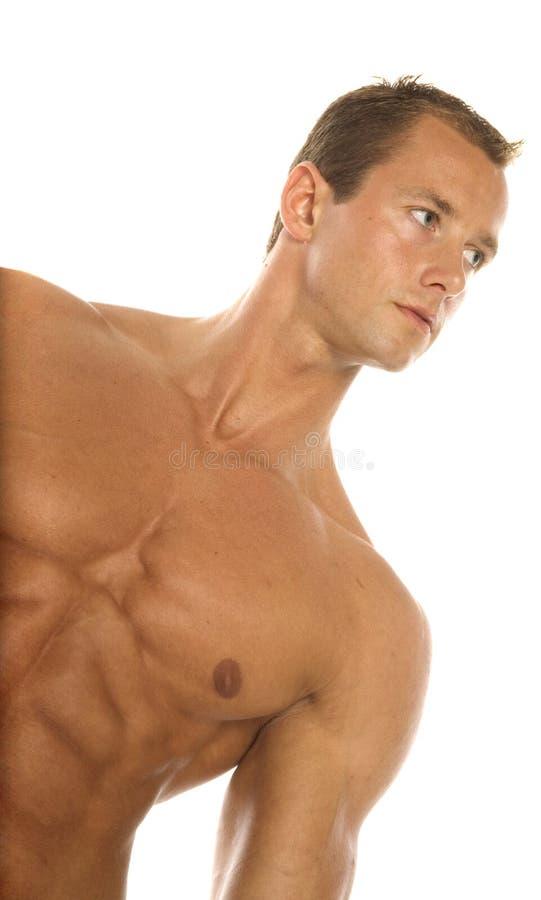 строитель тела стоковая фотография