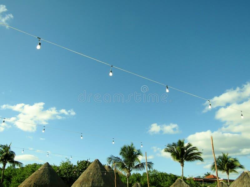 Строка винтажных электрических лампочек в мексиканском саде пляжа стоковые фото