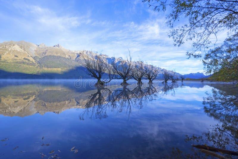 Строка деревьев вербы на озере Wakatipu в Glenorchy, Новой Зеландии стоковая фотография
