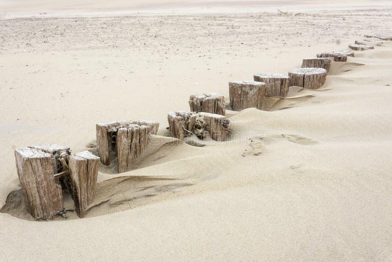 Строка малая старой, деревянная, поляки пляжа, значенные для ломать воду для безопасности стоковое фото rf