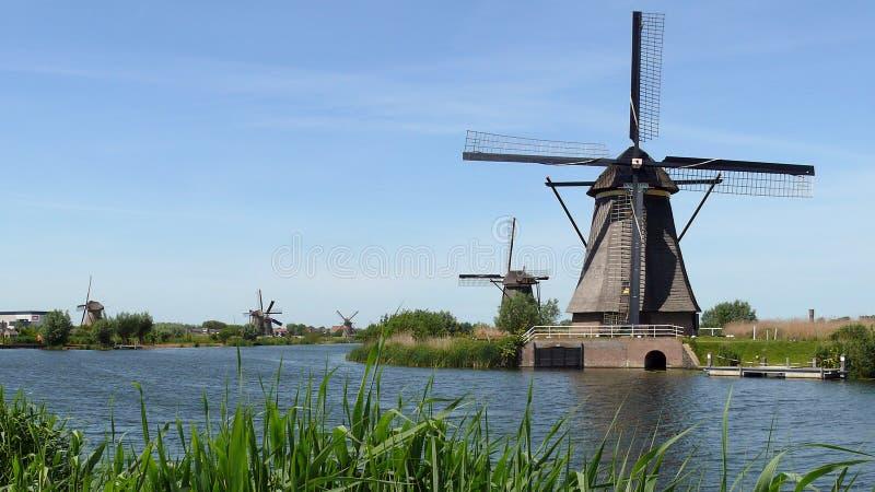 Строка мельниц в Kinderdijk, Нидерландах стоковая фотография rf