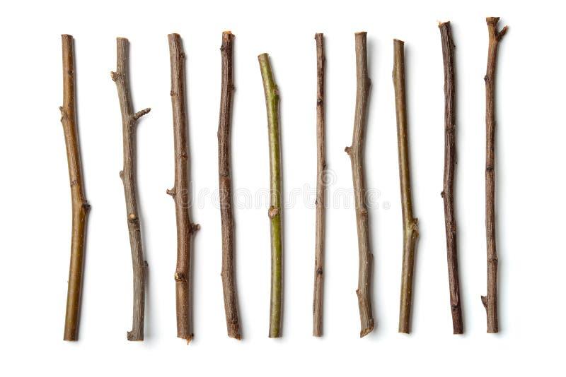 Строка сухих деревянных хворостин стоковая фотография
