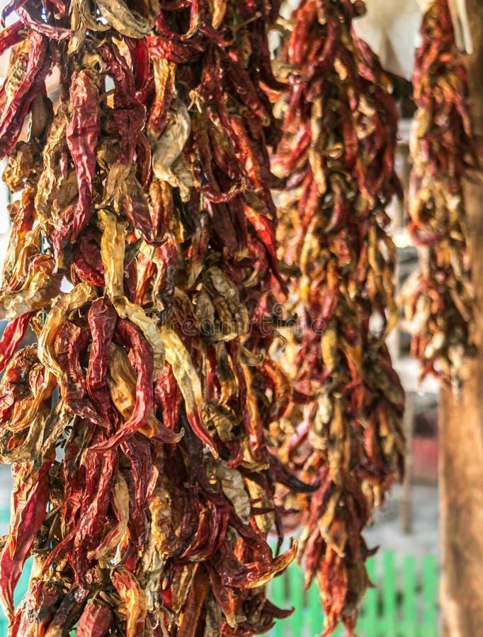 Строка суша перцы красного Chili вися на сельском доме стоковые фото