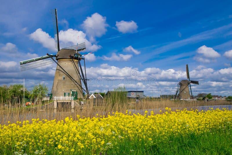 Строка традиционных мельниц ветра вдоль голубого канала в Kinderdijk, Голландии стоковые изображения rf