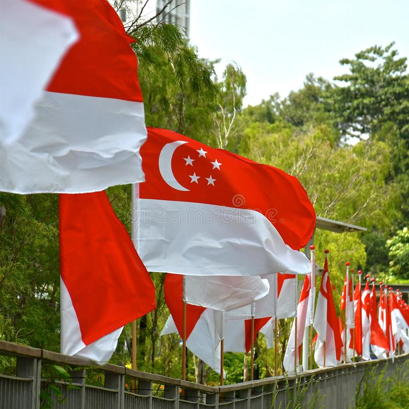 Строка флагов Сингапура стоковое фото rf