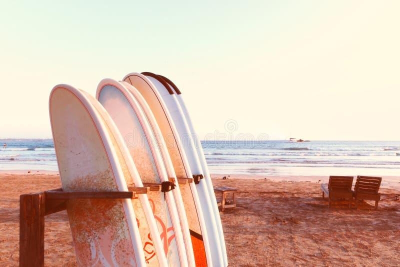 Строка surfboards, 2 кресел для отдыха на пляже стоковое изображение rf