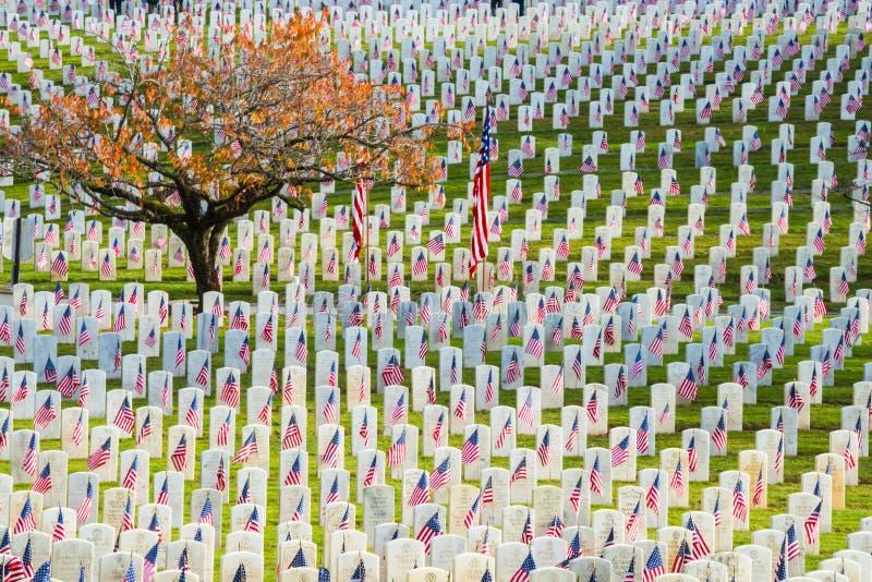 Строки надгробных плит ветеранов с американскими флагами стоковое изображение