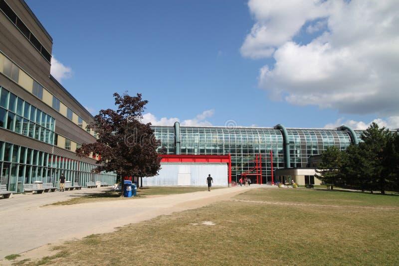 строя самомоднейший университет науки стоковые изображения