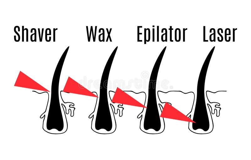 Структура волос иллюстрация вектора