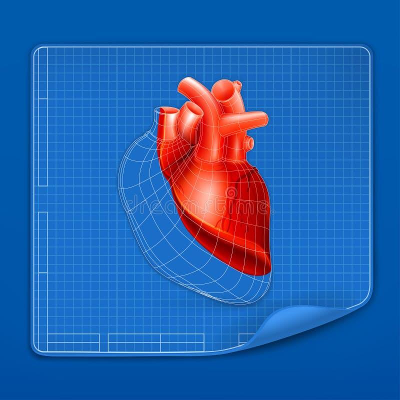 структура сердца светокопии иллюстрация вектора
